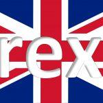 BREXIT. Il Parlamento Europeo vota la Risoluzione su Referendum britannico